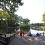 2014年板橋散歩 板橋区立郷土資料館を見学する part2