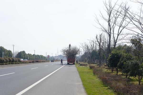 DSCF6241 - 南京?杭州@中華人民共和国・自転車ツーリング旅行記